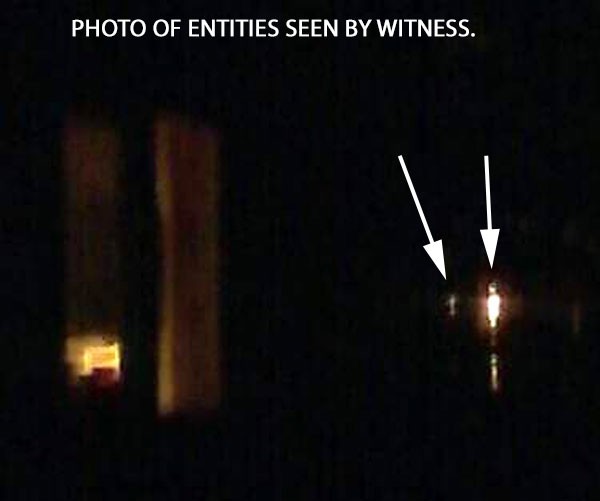PHOTO OF ENTITIES SEEN BY WITNESS.